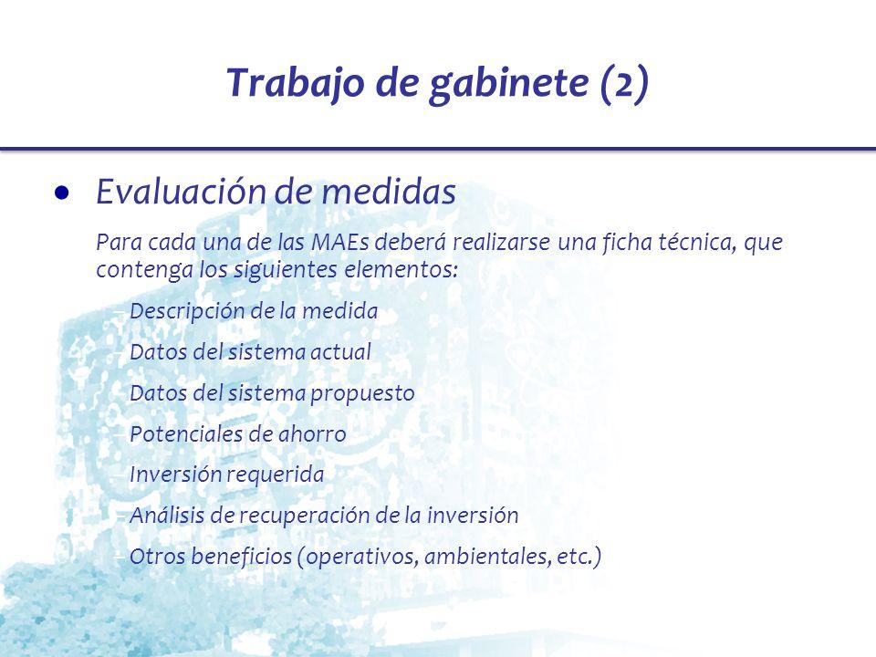 Trabajo de gabinete (2) Evaluación de medidas Para cada una de las MAEs deberá realizarse una ficha técnica, que contenga los siguientes elementos: –