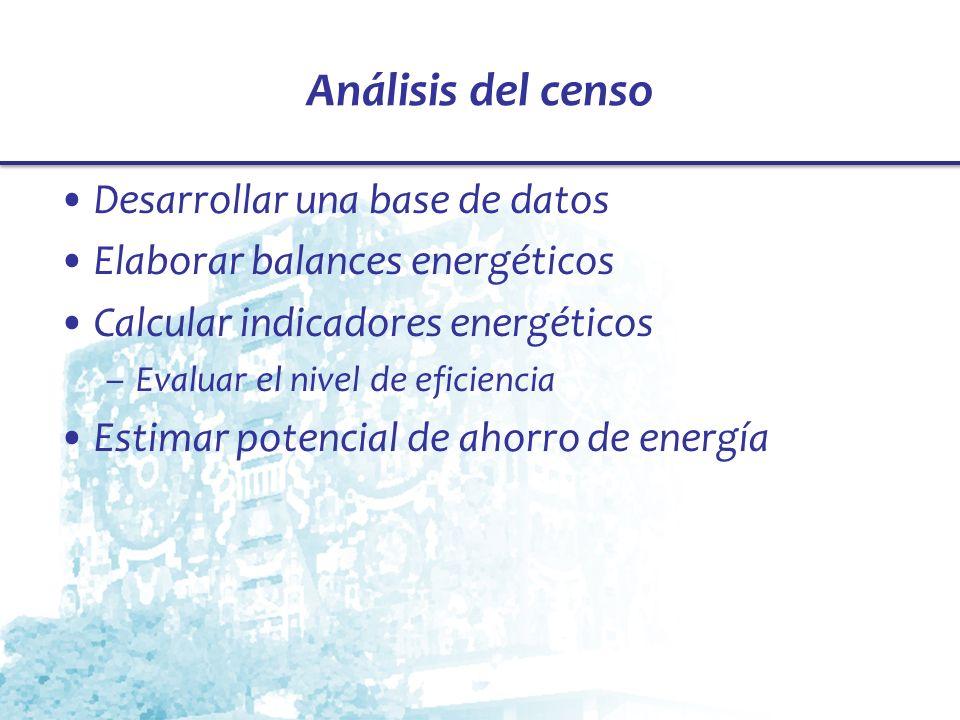 Análisis del censo Desarrollar una base de datos Elaborar balances energéticos Calcular indicadores energéticos –Evaluar el nivel de eficiencia Estima