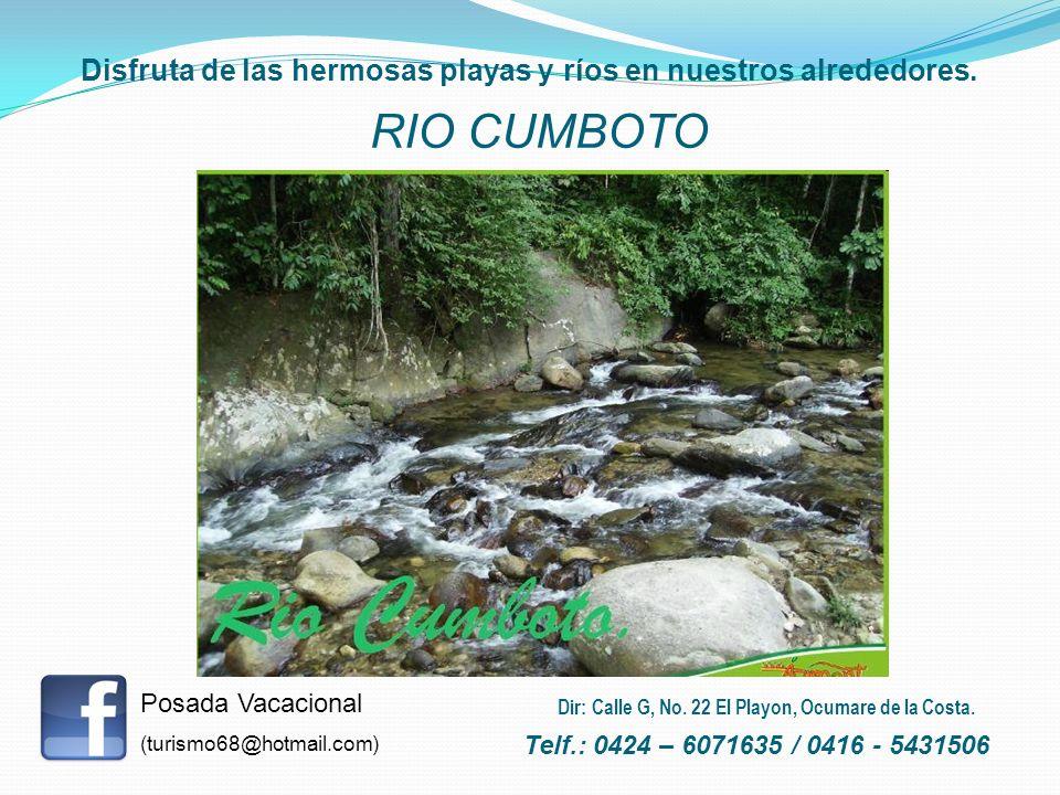 Disfruta de las hermosas playas y ríos en nuestros alrededores. RIO CUMBOTO Posada Vacacional (turismo68@hotmail.com) Telf.: 0424 – 6071635 / 0416 - 5