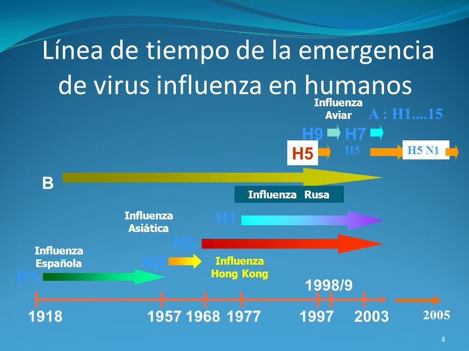 4 19181957196819771997 1998/9 2003 H1 B H2 H7 H5 H9 Influenza Española Influenza Asiática Influenza Rusa Influenza Aviar Influenza Hong Kong H3 Línea