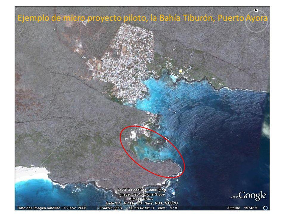Ejemplo de micro proyecto piloto, la Bahía Tiburón, Puerto Ayora