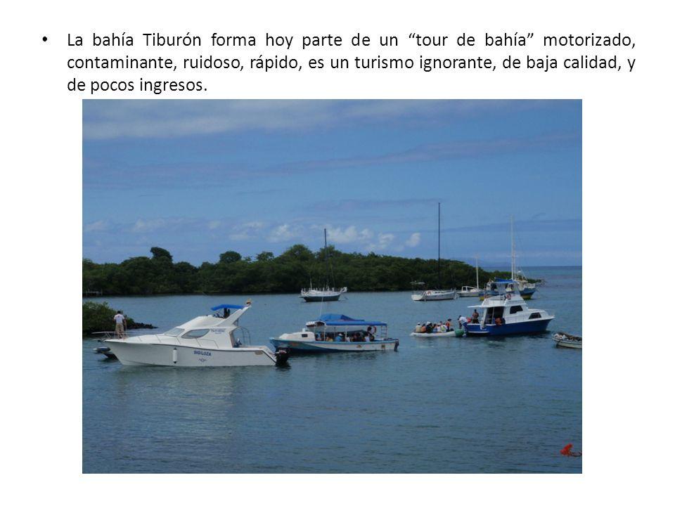 La bahía Tiburón forma hoy parte de un tour de bahía motorizado, contaminante, ruidoso, rápido, es un turismo ignorante, de baja calidad, y de pocos ingresos.
