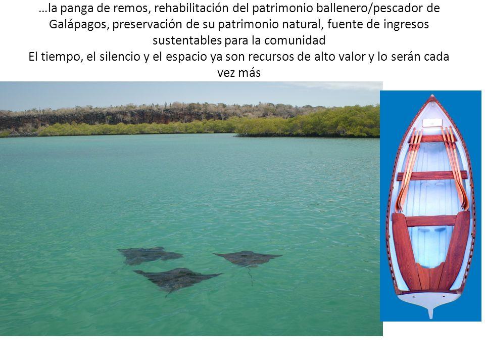 …la panga de remos, rehabilitación del patrimonio ballenero/pescador de Galápagos, preservación de su patrimonio natural, fuente de ingresos sustentables para la comunidad El tiempo, el silencio y el espacio ya son recursos de alto valor y lo serán cada vez más
