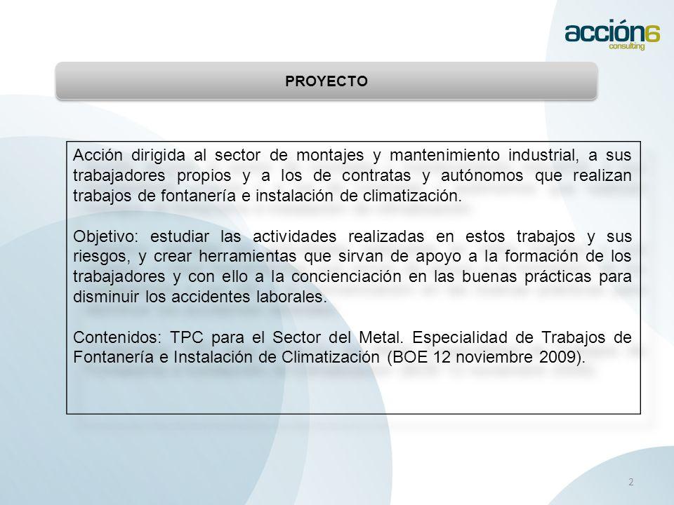 DESARROLLO DEL PROYECTO 3 DURACIÓN Del 1 de enero al 31 de diciembre de 2011 FORMACIÓN GRUPO DE TRABAJO Responsables y Tcos.