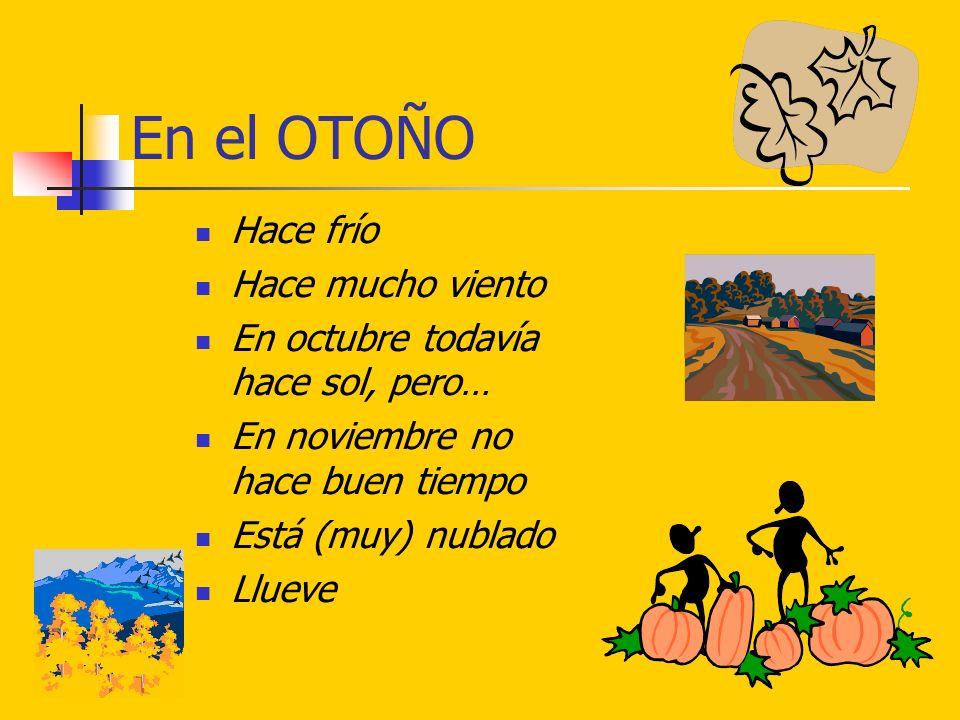 En el OTOÑO Hace frío Hace mucho viento En octubre todavía hace sol, pero… En noviembre no hace buen tiempo Está (muy) nublado Llueve