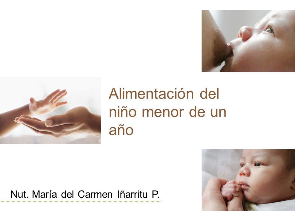 La alimentación del niño menor de 1 año Seno Materno Sucedáneos de leche materna Ablactación