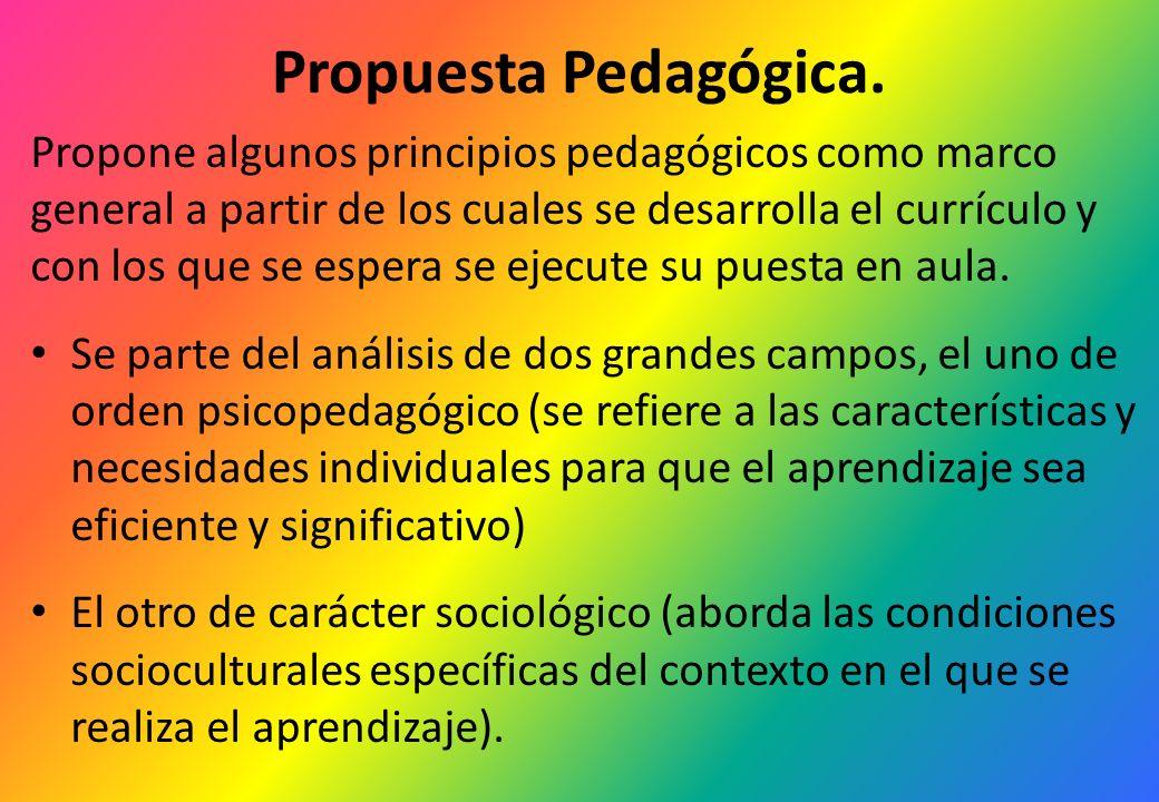 Propuesta Pedagógica. Propone algunos principios pedagógicos como marco general a partir de los cuales se desarrolla el currículo y con los que se esp