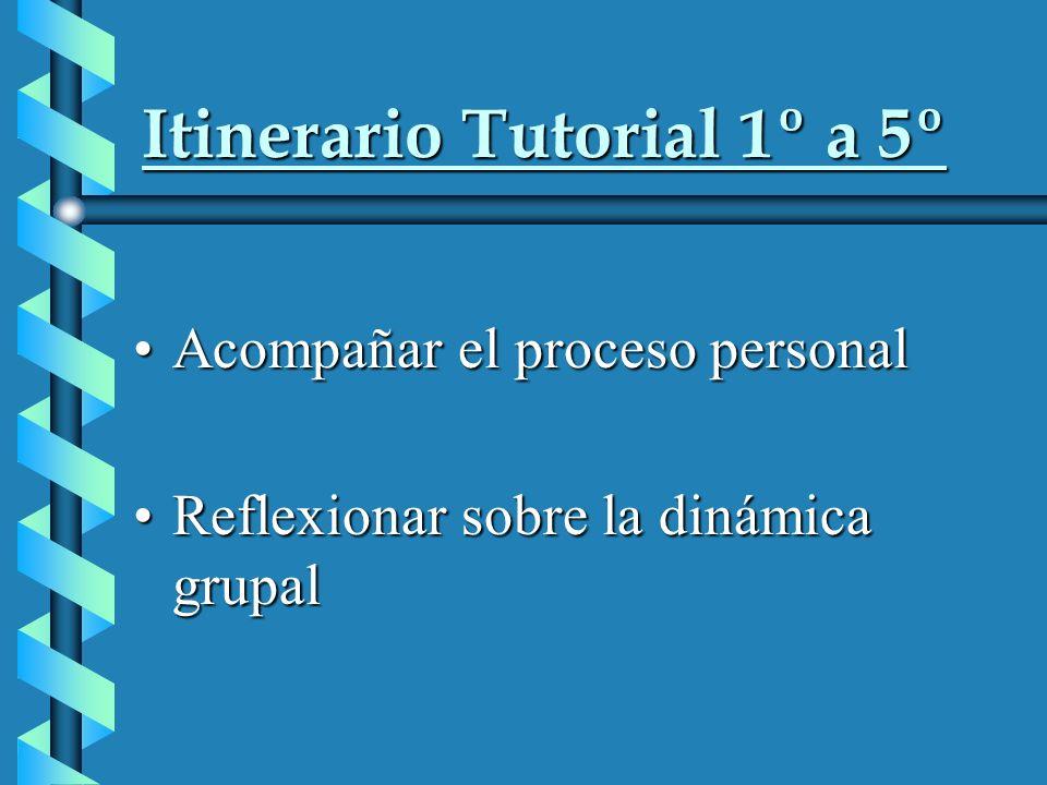 Itinerario Tutorial 1º a 5º Acompañar el proceso personalAcompañar el proceso personal Reflexionar sobre la dinámica grupalReflexionar sobre la dinámica grupal