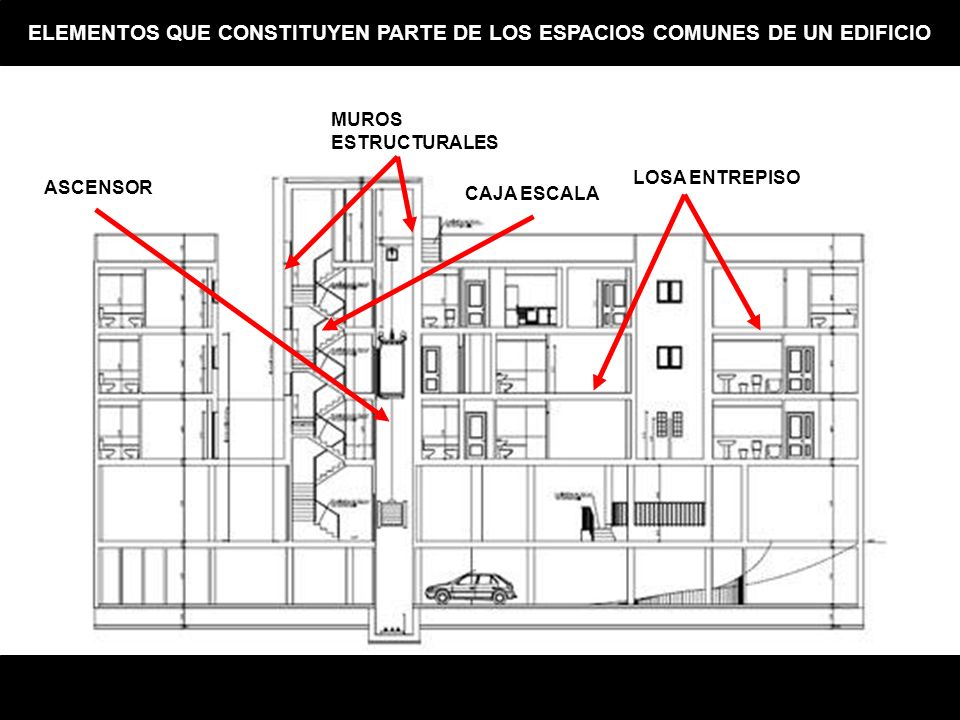 LOSA ENTREPISO MUROS ESTRUCTURALES CAJA ESCALA ASCENSOR ELEMENTOS QUE CONSTITUYEN PARTE DE LOS ESPACIOS COMUNES DE UN EDIFICIO