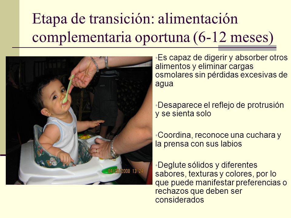 Etapa de transición: alimentación complementaria oportuna (6-12 meses) Es capaz de digerir y absorber otros alimentos y eliminar cargas osmolares sin