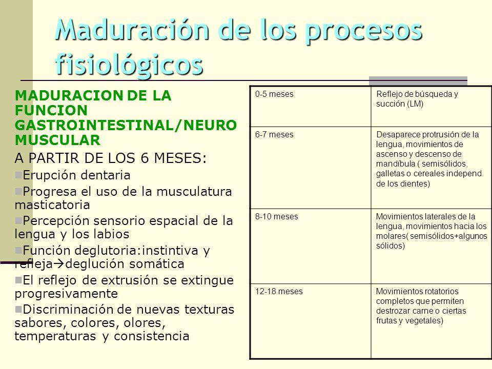 Maduración de los procesos fisiológicos MADURACION DE LA FUNCION GASTROINTESTINAL/NEURO MUSCULAR A PARTIR DE LOS 6 MESES: Erupción dentaria Progresa e