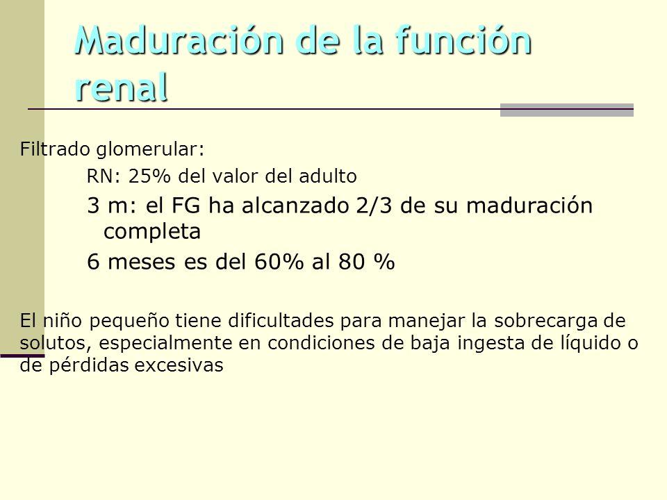 Maduración de la función renal Filtrado glomerular: RN: 25% del valor del adulto 3 m: el FG ha alcanzado 2/3 de su maduración completa 6 meses es del