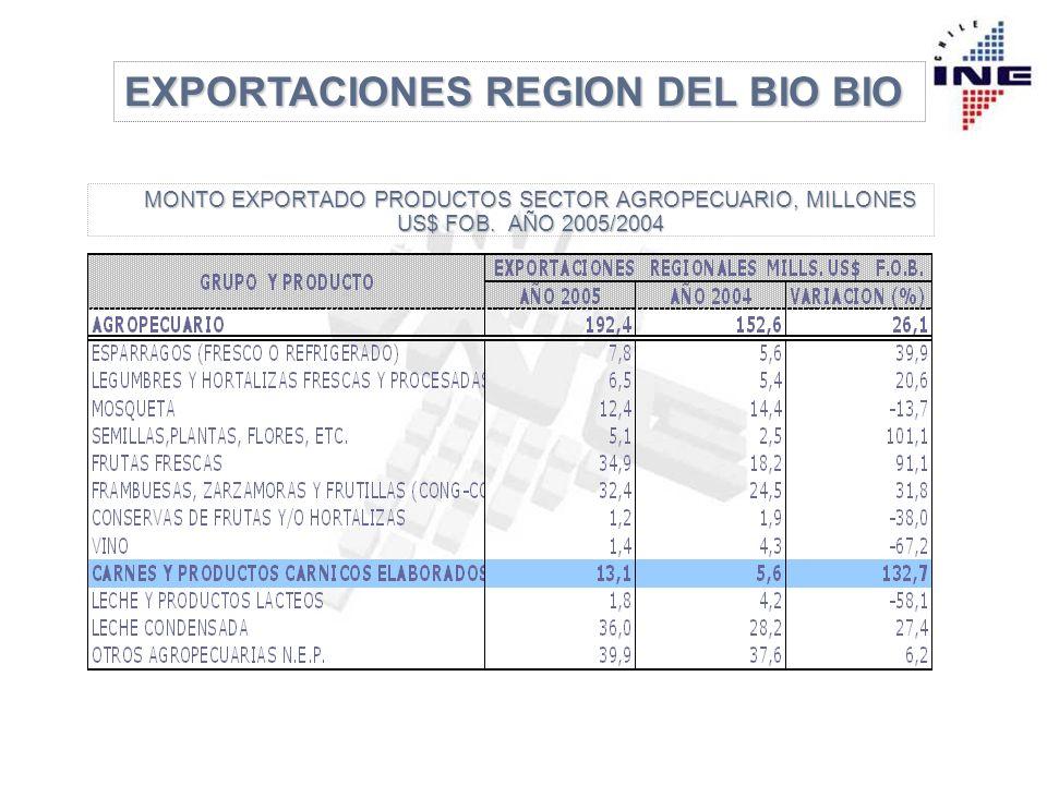 EXPORTACIONES REGION DEL BIO BIO Bloque Económico Participación (%) Año 2003 Año 2004 Año 2005 Año 2005 Principales Países Año 2005 (Participación %) APEC33,130,028,6 China (33,4) Japón (22,9) Perú (16,5) MERCOSUR 3,33,7 4,5 Brasil (48,6) Argentina (42,6) NAFTA30,9 35,237,0 EEUU (72,6) México (21,2) Canadá ( 6,2) UE 14,6 13,613,3 Italia (22,8) España (20,8) Holanda (19,1) OTROS18,117,516,6