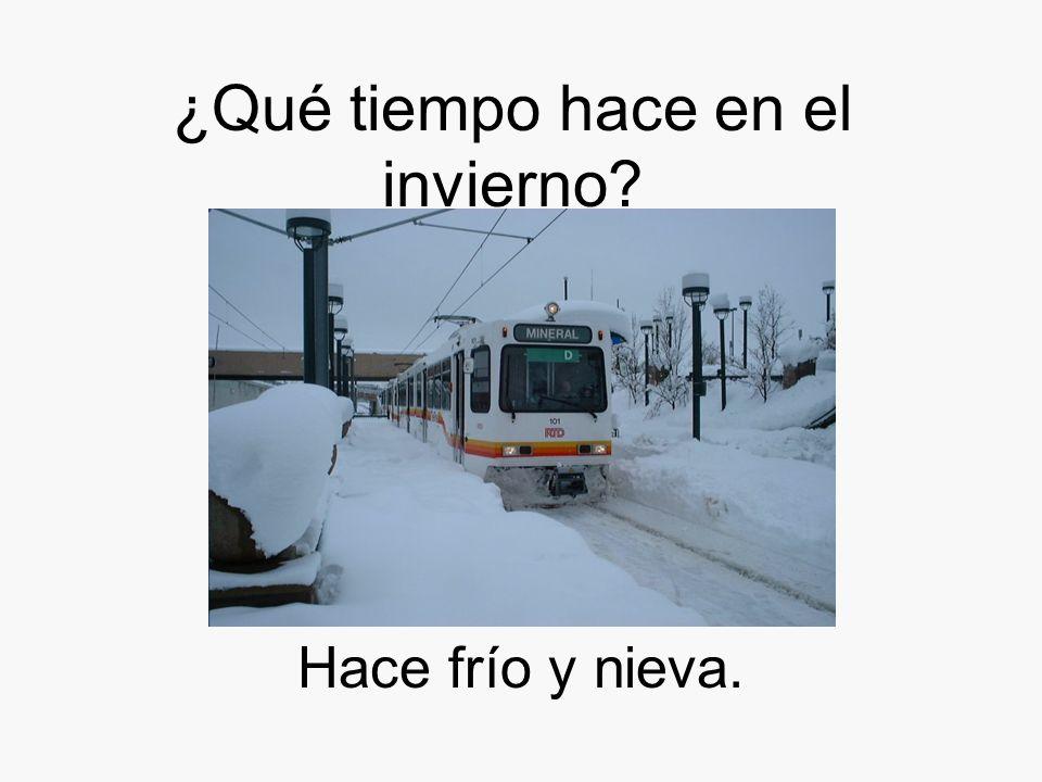 ¿Qué tiempo hace en el invierno? Hace frío y nieva.