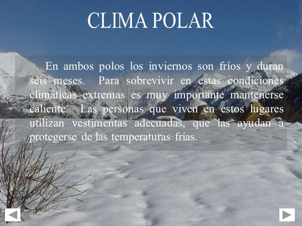 En ambos polos los inviernos son fríos y duran seis meses. Para sobrevivir en estas condiciones climáticas extremas es muy importante mantenerse calie