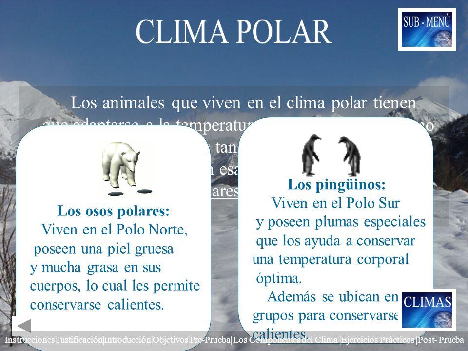 Los animales que viven en el clima polar tienen que adaptarse a la temperatura para sobrevivir. Como el clima de los polos es tan frío, no existen muc