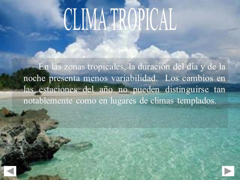 En las zonas tropicales, la duración del día y de la noche presenta menos variabilidad. Los cambios en las estaciones del año no pueden distinguirse t