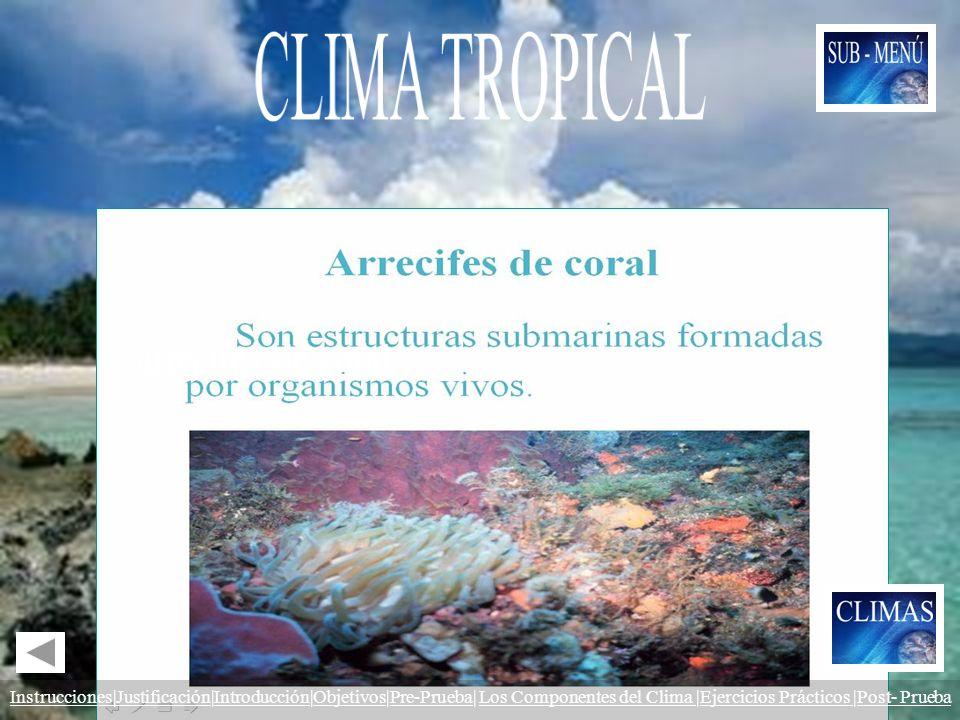 Las zonas tropicales del Planeta constituyen la única área en donde se encuentran los En estos arrecifes vive una gran cantidad de peces y de otros or