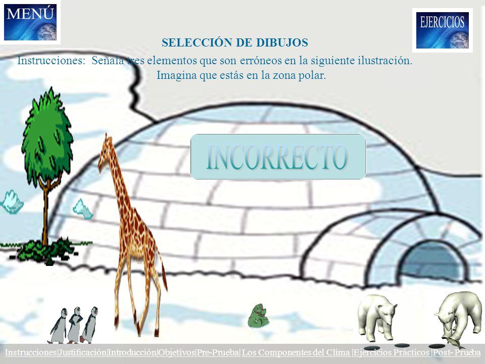 SELECCIÓN DE DIBUJOS Instrucciones: Señala tres elementos que son erróneos en la siguiente ilustración. Imagina que estás en la zona polar. Instruccio