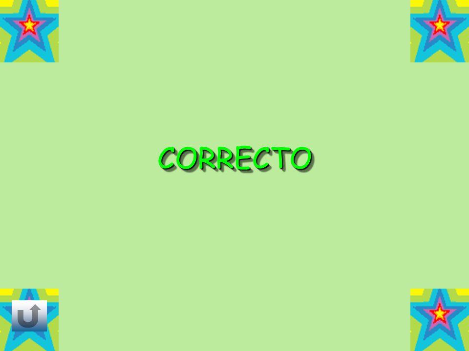 CORRECTOCORRECTO