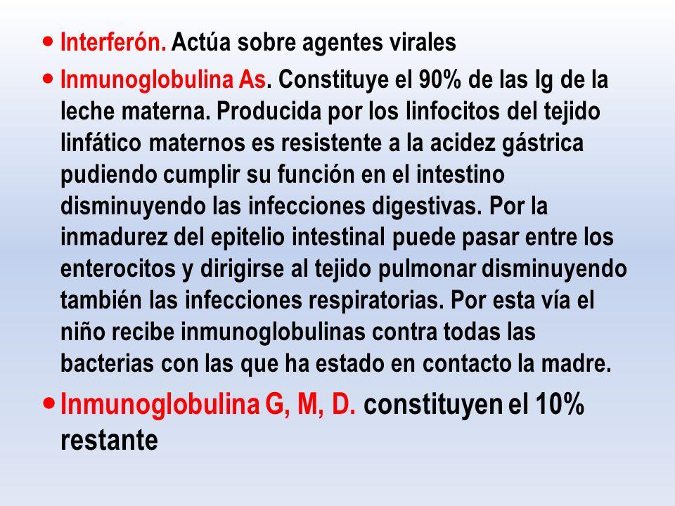 Interferón.Actúa sobre agentes virales Inmunoglobulina As.