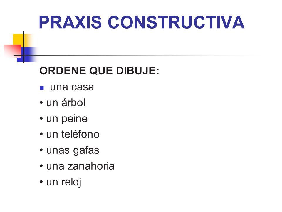 PRAXIS CONSTRUCTIVA ORDENE QUE DIBUJE: una casa un árbol un peine un teléfono unas gafas una zanahoria un reloj