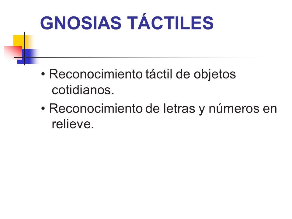 GNOSIAS TÁCTILES Reconocimiento táctil de objetos cotidianos. Reconocimiento de letras y números en relieve.