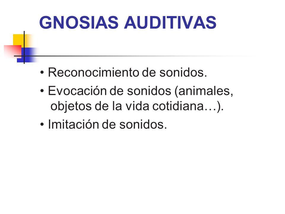 GNOSIAS AUDITIVAS Reconocimiento de sonidos. Evocación de sonidos (animales, objetos de la vida cotidiana…). Imitación de sonidos.