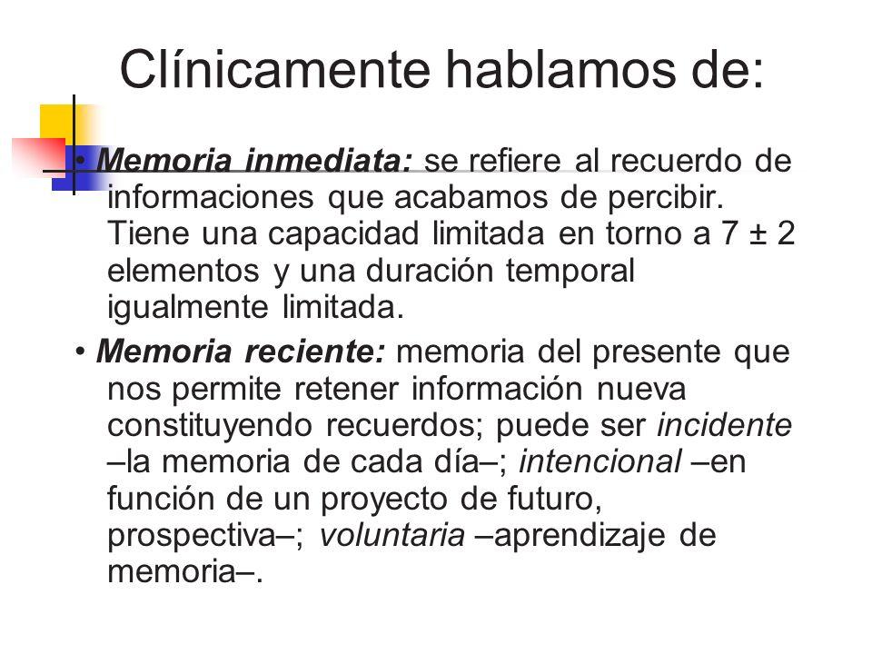 Clínicamente hablamos de: Memoria inmediata: se refiere al recuerdo de informaciones que acabamos de percibir. Tiene una capacidad limitada en torno a