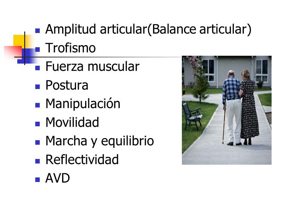 Amplitud articular(Balance articular) Trofismo Fuerza muscular Postura Manipulación Movilidad Marcha y equilibrio Reflectividad AVD