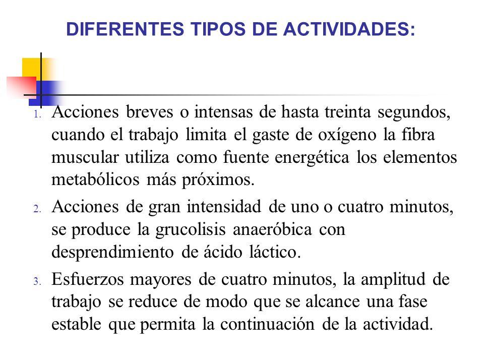 DIFERENTES TIPOS DE ACTIVIDADES: 1. Acciones breves o intensas de hasta treinta segundos, cuando el trabajo limita el gaste de oxígeno la fibra muscul