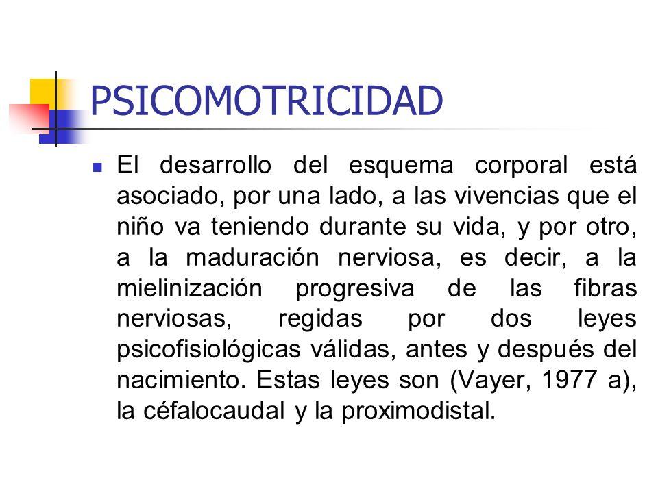 PSICOMOTRICIDAD En la primera(céfalocaudal), el desarrollo se extiende a través del cuerpo desde la cabeza hasta las extremidades; y en la segunda(proximodistal) el desarrollo procede desde el centro hacia la periferia a partir del eje central del cuerpo.