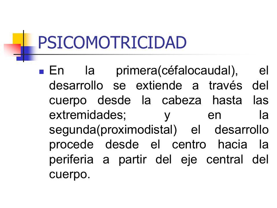 PSICOMOTRICIDAD En la primera(céfalocaudal), el desarrollo se extiende a través del cuerpo desde la cabeza hasta las extremidades; y en la segunda(pro