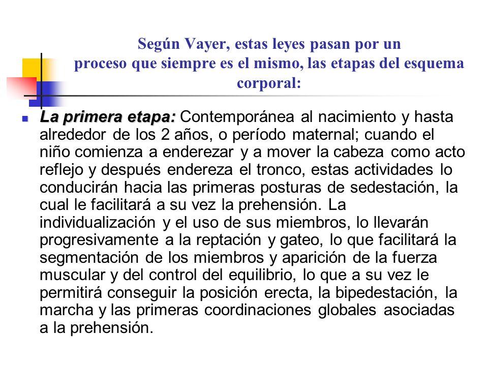 Según Vayer, estas leyes pasan por un proceso que siempre es el mismo, las etapas del esquema corporal: La primera etapa: La primera etapa: Contemporá