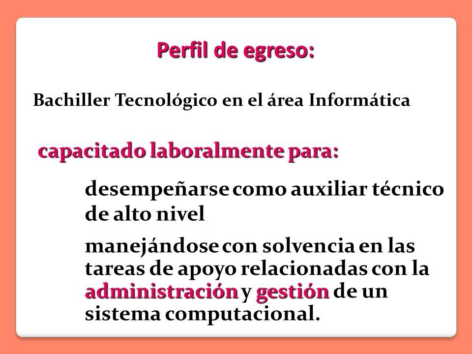Perfil de egreso: capacitado laboralmente para: Bachiller Tecnológico en el área Informática manejándose con solvencia en las tareas de apoyo relacionadas con la administración y gestión de un sistema computacional.