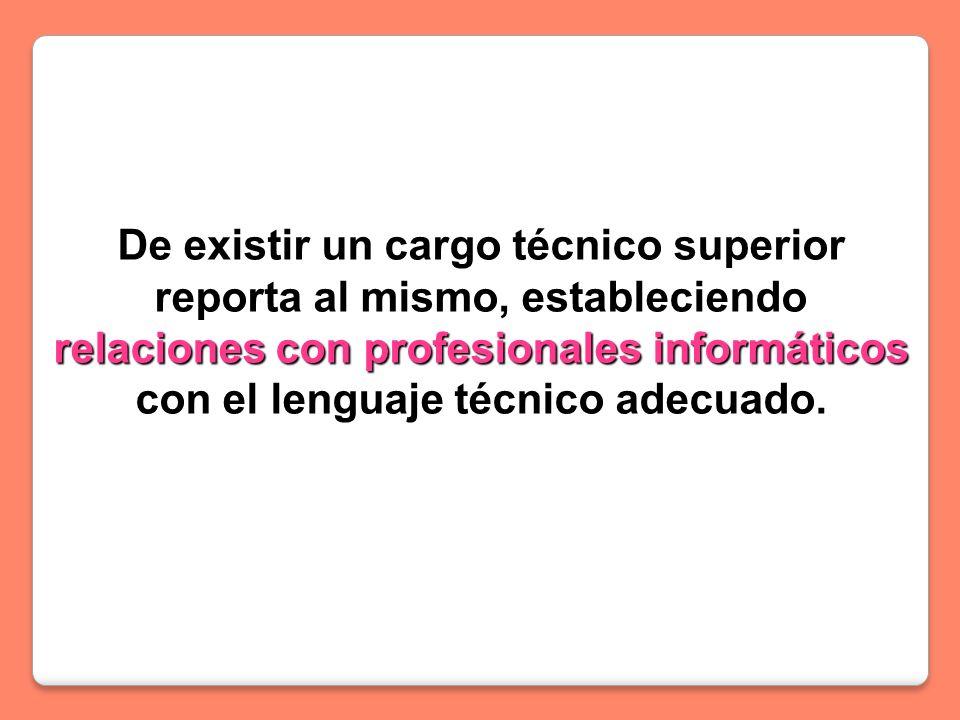 De existir un cargo técnico superior reporta al mismo, estableciendo relaciones con profesionales informáticos con el lenguaje técnico adecuado.