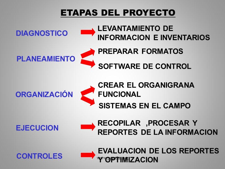 PREPARAR FORMATOS EVALUACION DE LOS REPORTES Y OPTIMIZACION ETAPAS DEL PROYECTO PLANEAMIENTO SOFTWARE DE CONTROL ORGANIZACIÓN CREAR EL ORGANIGRANA FUN