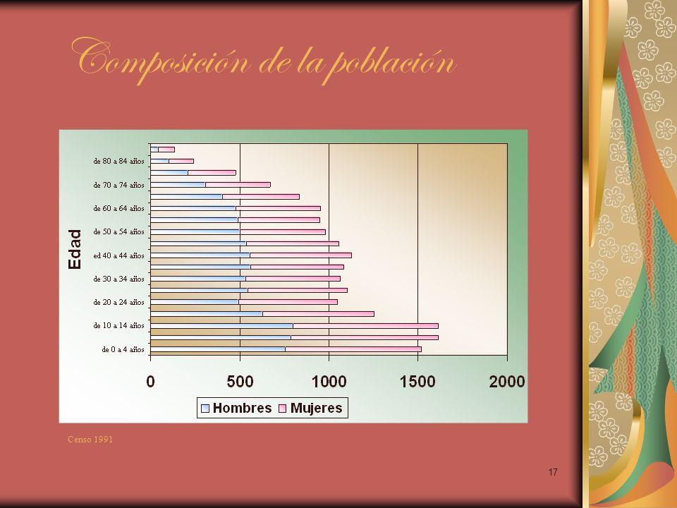 17 Composición de la población Censo 1991
