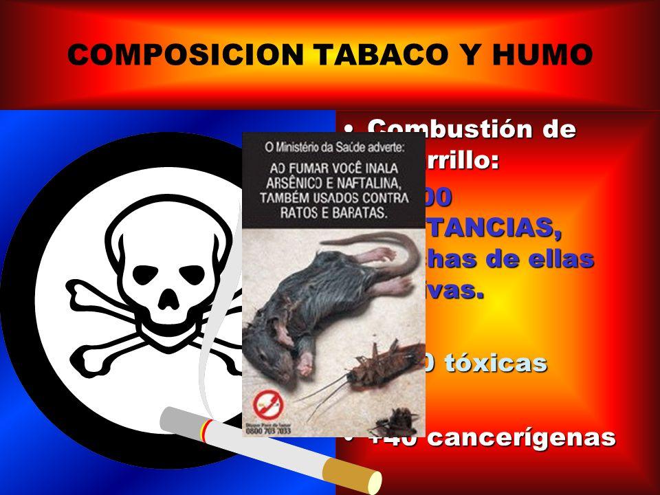COMPOSICIÓN DEL HUMO DEL TABACO; EFECTOS DE LA NICOTINA