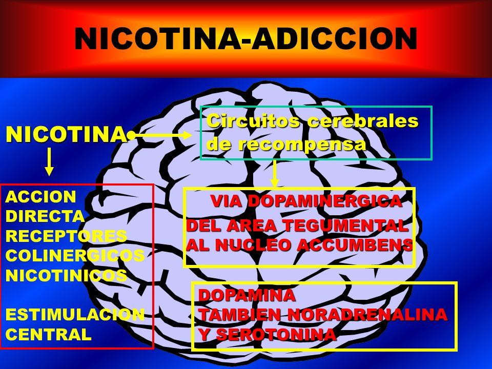 TABACO-ADICCION Nicotina es una droga con igual o mayor poder de adicción que cocaína o heroína.Nicotina es una droga con igual o mayor poder de adicción que cocaína o heroína.