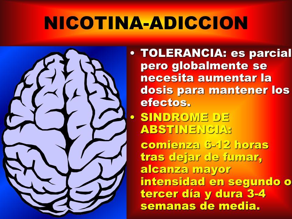 NICOTINA-ADICCION Circuitos cerebrales de recompensa VIA DOPAMINERGICA DEL AREA TEGUMENTAL AL NUCLEO ACCUMBENS NICOTINA DOPAMINA TAMBIEN NORADRENALINA Y SEROTONINA ACCION DIRECTA RECEPTORES COLINERGICOS NICOTINICOS ESTIMULACION CENTRAL