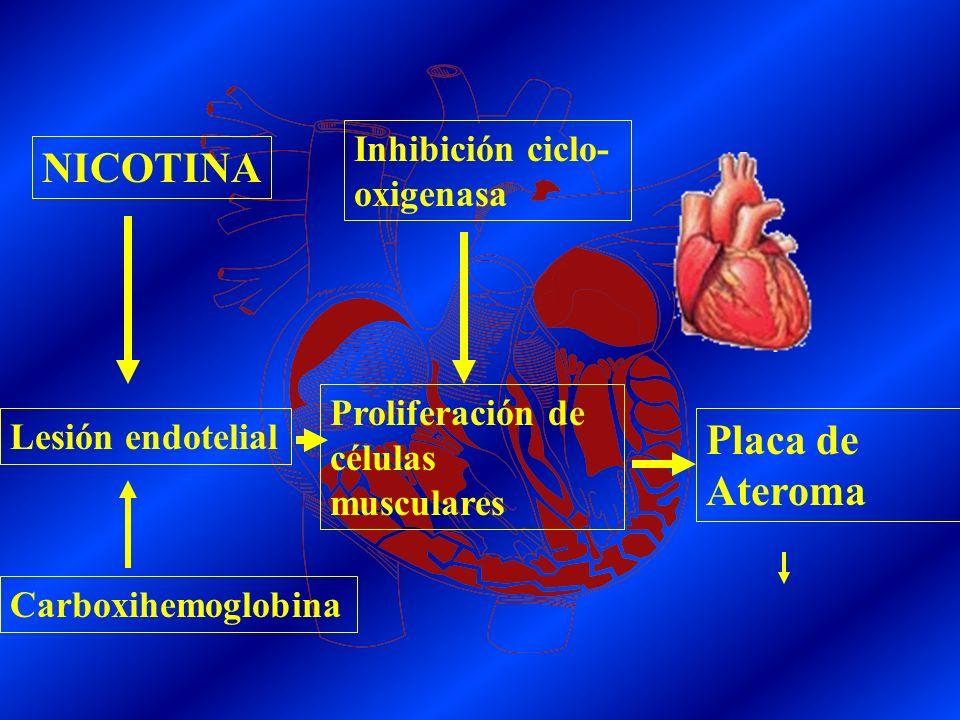 NICOTINACatecolaminas Demanda de O2 Episodios isquémicos Oferta de O2Carboxihemoglobina