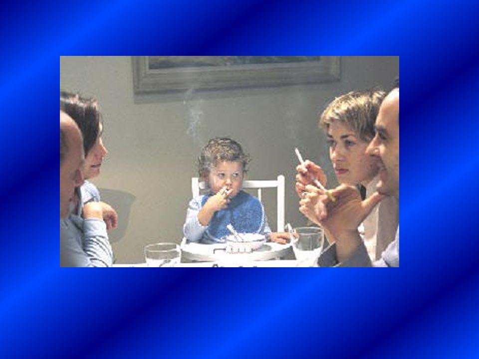 Antes de que finalice 2005 no se podrá fumar en el trabajo :: La ministra de Sanidad y Consumo, Elena Salgado, quiere alcanzar un acuerdo con organiza