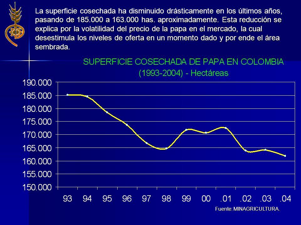 La superficie cosechada ha disminuido drásticamente en los últimos años, pasando de 185.000 a 163.000 has. aproximadamente. Esta reducción se explica