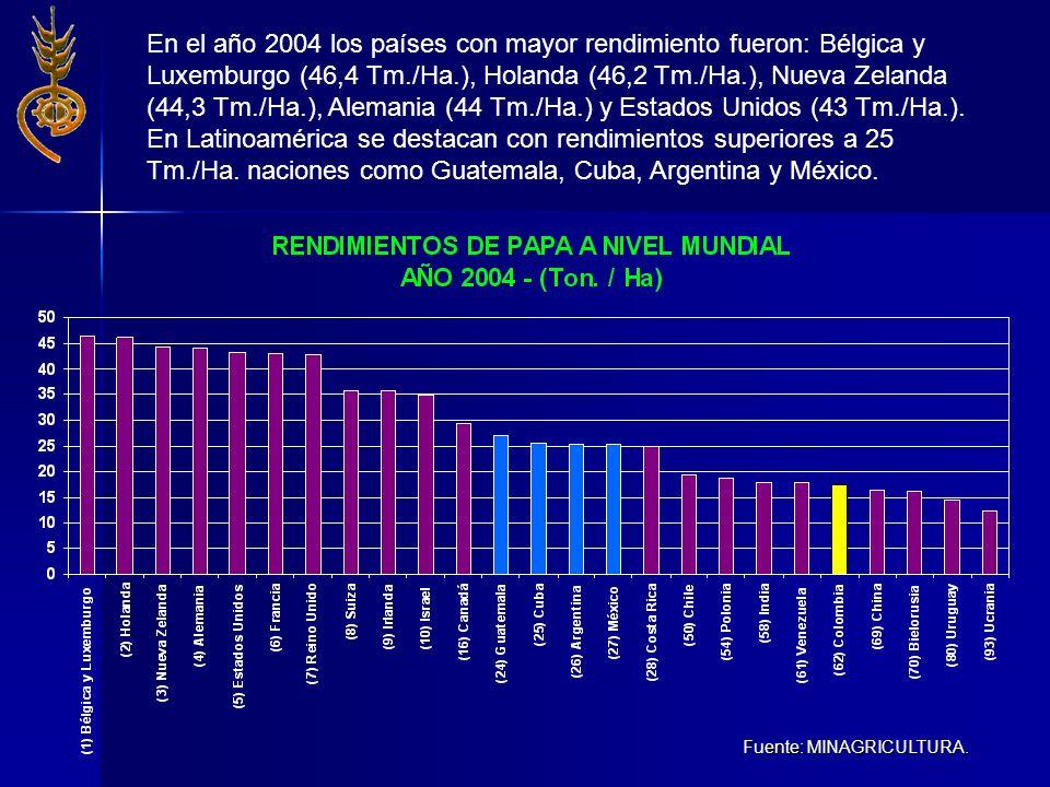 Fuente: MINAGRICULTURA. En el año 2004 los países con mayor rendimiento fueron: Bélgica y Luxemburgo (46,4 Tm./Ha.), Holanda (46,2 Tm./Ha.), Nueva Zel