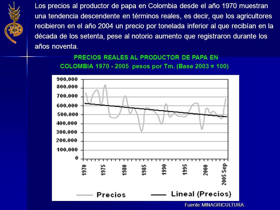 Fuente: MINAGRICULTURA. PRECIOS REALES AL PRODUCTOR DE PAPA EN COLOMBIA 1970 - 2005 pesos por Tm. (Base 2003 = 100) Los precios al productor de papa e
