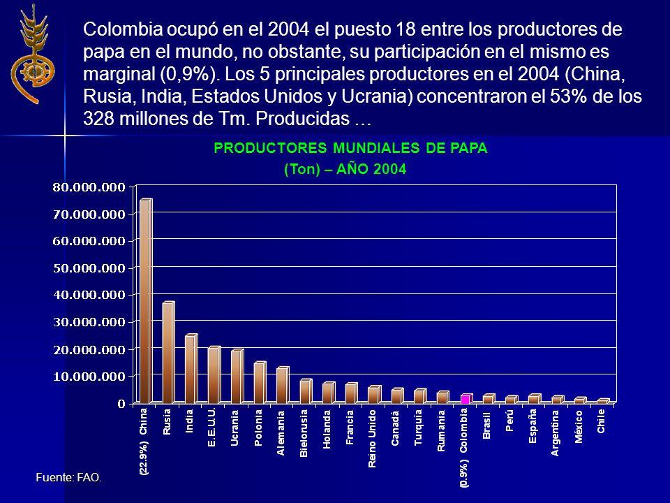 Colombia ocupó en el 2004 el puesto 18 entre los productores de papa en el mundo, no obstante, su participación en el mismo es marginal (0,9%). Los 5