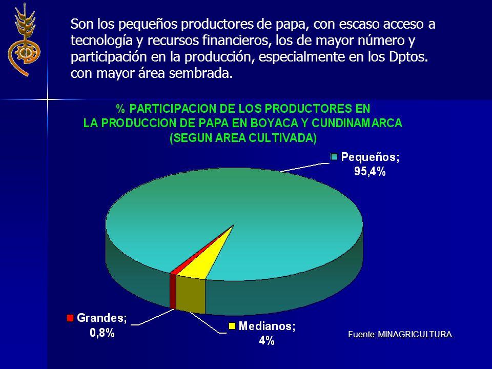 Son los pequeños productores de papa, con escaso acceso a tecnología y recursos financieros, los de mayor número y participación en la producción, esp