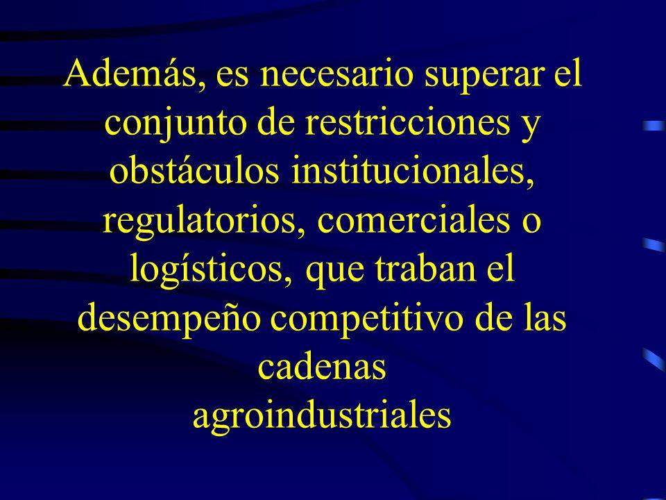 Además, es necesario superar el conjunto de restricciones y obstáculos institucionales, regulatorios, comerciales o logísticos, que traban el desempeñ