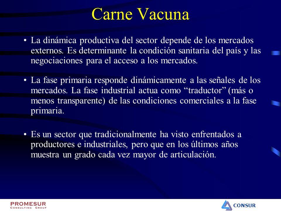 CONSUR Carne Vacuna La dinámica productiva del sector depende de los mercados externos. Es determinante la condición sanitaria del país y las negociac